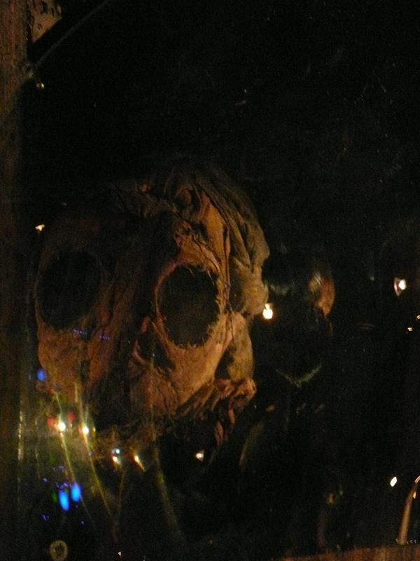danse-macabre-installation-reducedsize